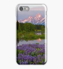 Lupine Explosion in the Tetons (iPhone4 Case) iPhone Case/Skin