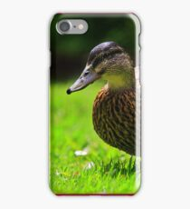 Duck - iPhone Case iPhone Case/Skin