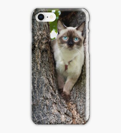 kitty iphone iPhone Case/Skin