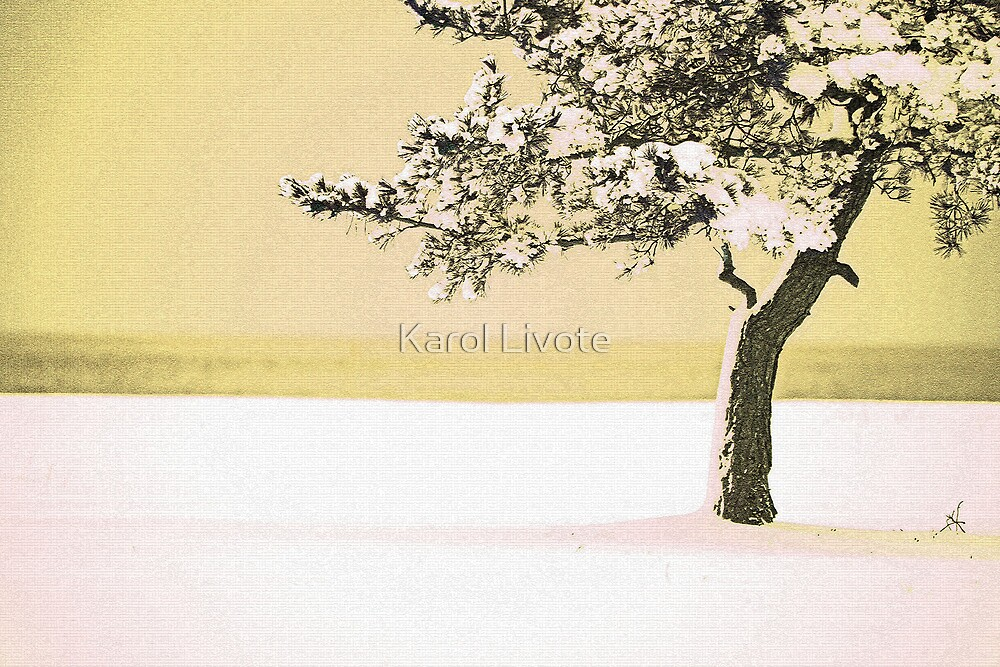 A Winter Moment by Karol Livote