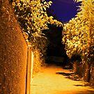 Village Street - Thermi, Lesvos by George Limitsios