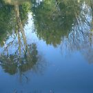 Greens Mirroring in the Blue by sstarlightss