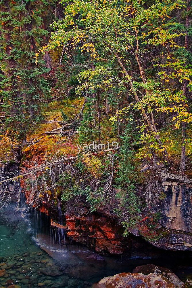 Canada. Canadian Rockies. Jasper NP. Maligne Canyon. Fall Colors. by vadim19