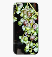 Grapes iPhone case iPhone Case