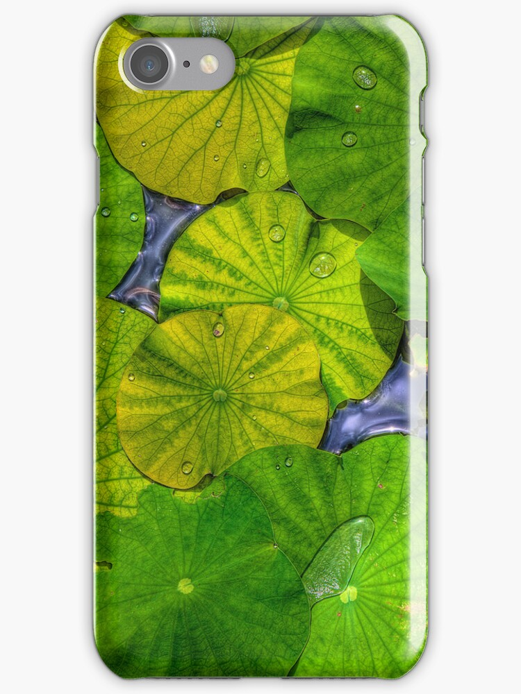 Waterlilies in High Dynamic Range case for iPhone 4/4S by Bill Wetmore