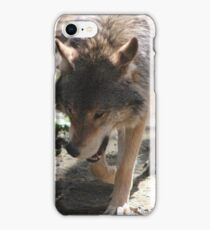 Prowling Wolf iPhone Case/Skin