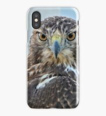Red Tailed Hawk Close Up iPhone Case