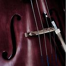 cello by John Holding