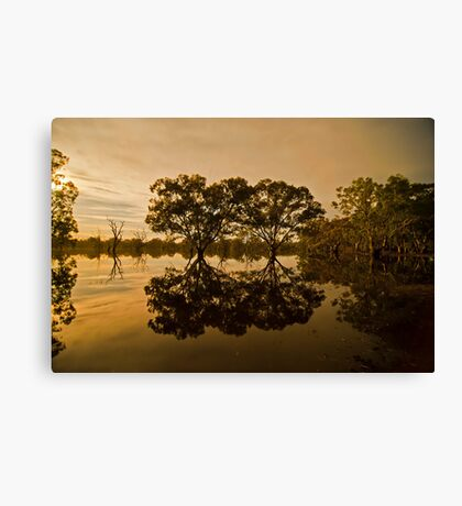 Moonlight Reflections Canvas Print