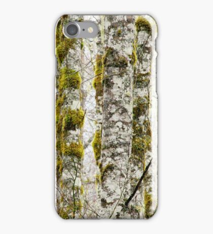 The Forest Through The Light iPhone case.  iPhone Case/Skin