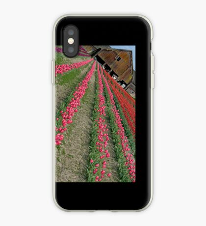 Another Angle On An Old Barn And Tulips iPhone case. iPhone Case