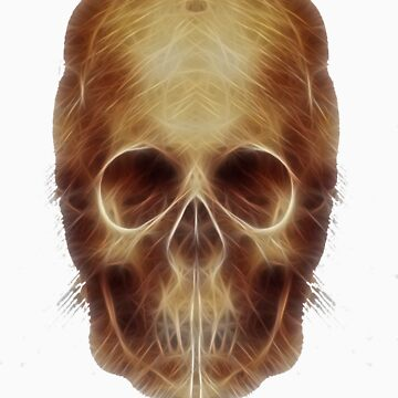 Leonardo Da Vinci Skull Fractal by DragonLantern