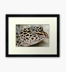 FANCY DESERT EYES Framed Print