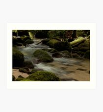 Mossman Gorge, Far North Queensland Art Print
