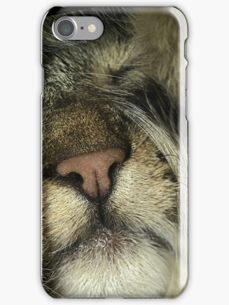 Tabby Cat Phone Case Cover by anjafreak
