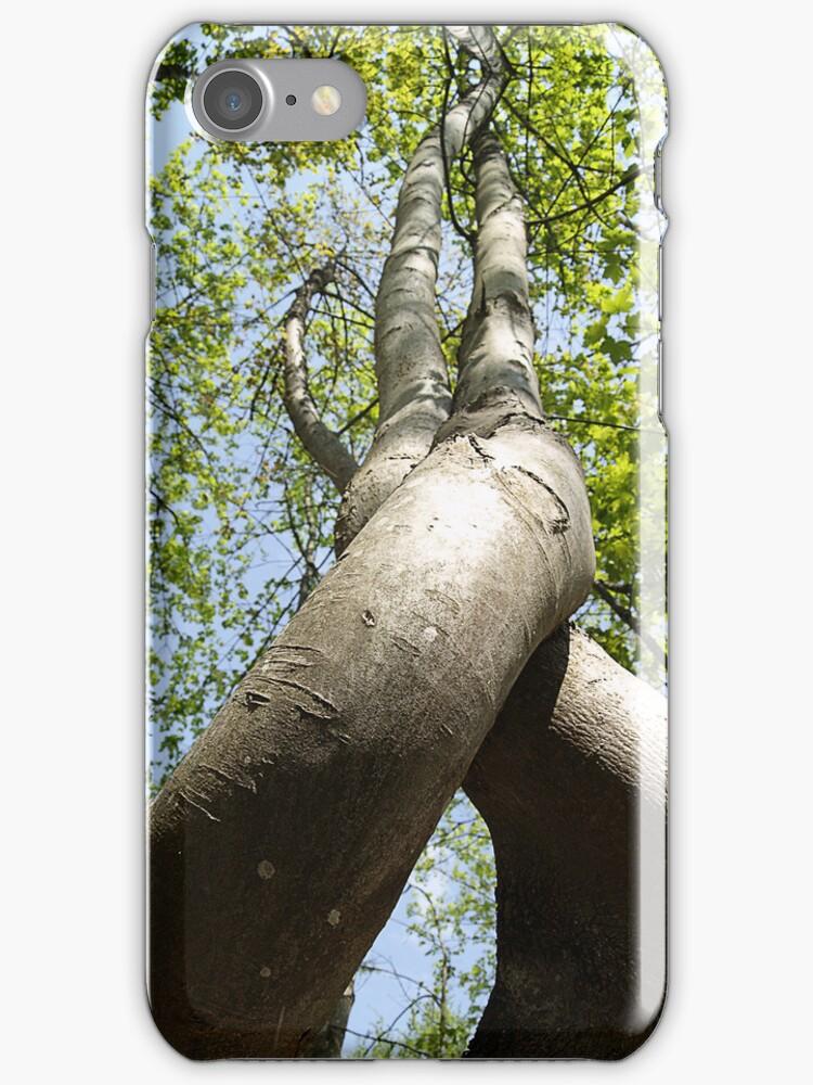 Dancing Trees by anjafreak