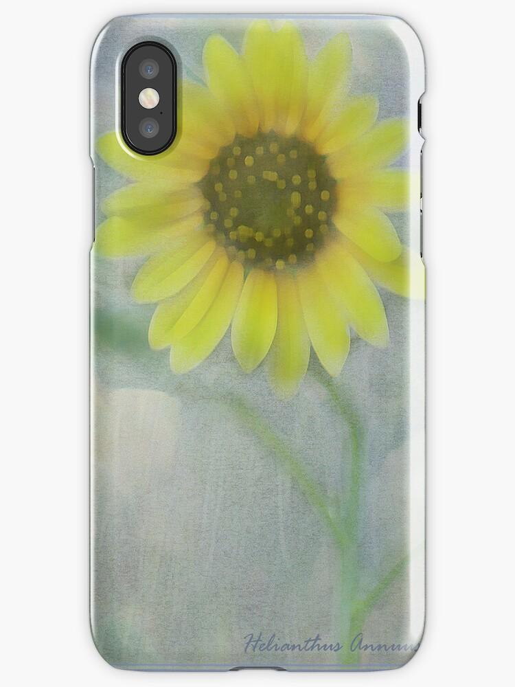 Helianthus Annuus I Phone Case by Diane Johnson-Mosley