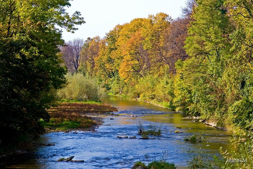 Autumn 3 by MarekM