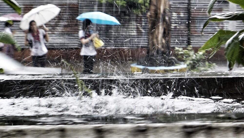 Rain by Cara Gallardo Weil