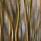 Abstract trees by smilyjay
