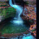 Adams Falls (iPhone Case) by Aaron Campbell