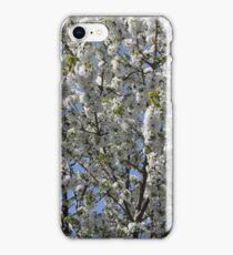 White blossom iPhone Case/Skin