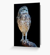 The Burrower Greeting Card