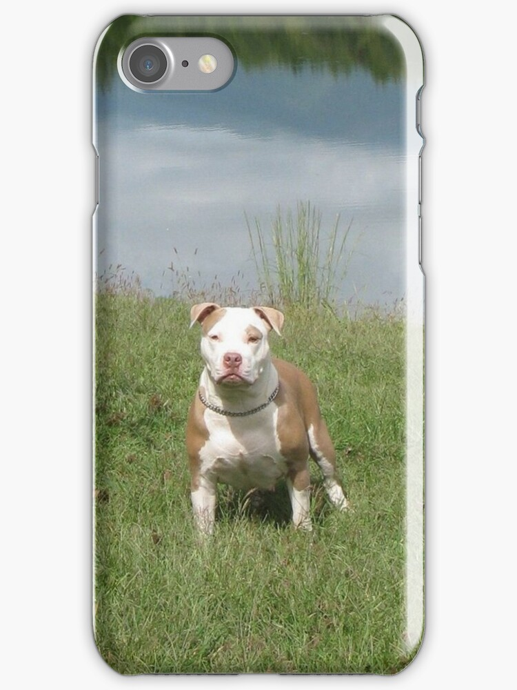 APBT iPhone Case - Rose by Ginny York