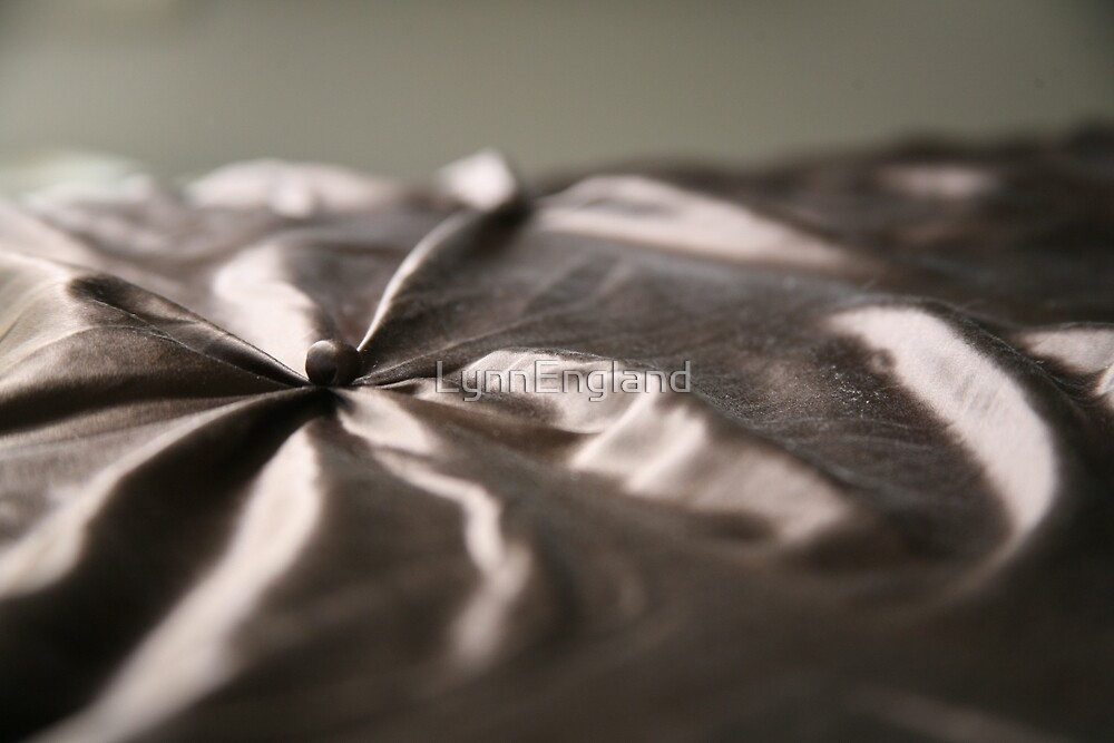 Silk II............. by LynnEngland