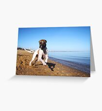Gorgeous and Goofy Greeting Card