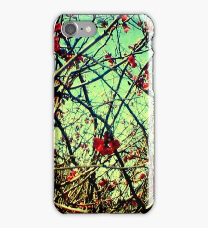 Blossom Frenzy - TTV iPhone Case/Skin