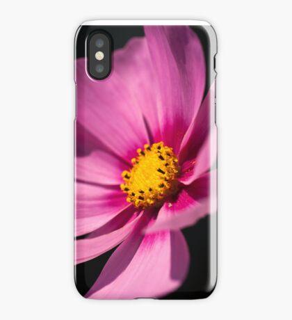 Cosmea iPhone Case iPhone Case