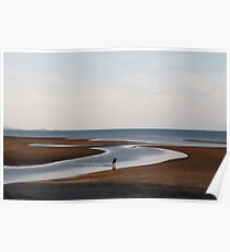 Yule Point at low tide Poster
