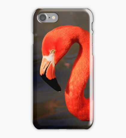 Flamingo (iPhone Case) iPhone Case/Skin
