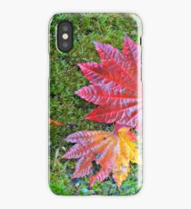 Ground Color iPhone Case/Skin