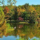 Fall in Kentucky by kentuckyblueman