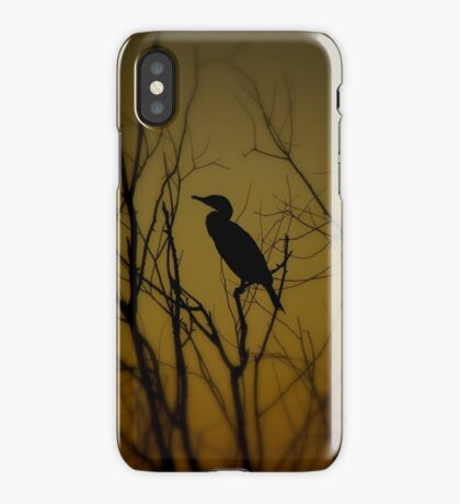 Avian Silhouette iPhone Case iPhone Case/Skin