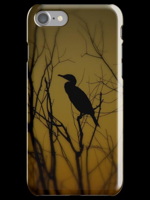 Avian Silhouette iPhone Case by artisandelimage
