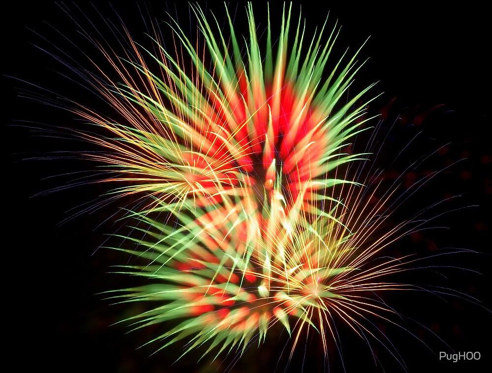 July Fireworks 20xx by PugH00