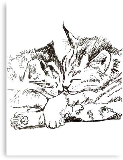 Joint Cat Nap by Katarina Nice
