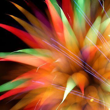 January Fireworks 20xx by PugH00