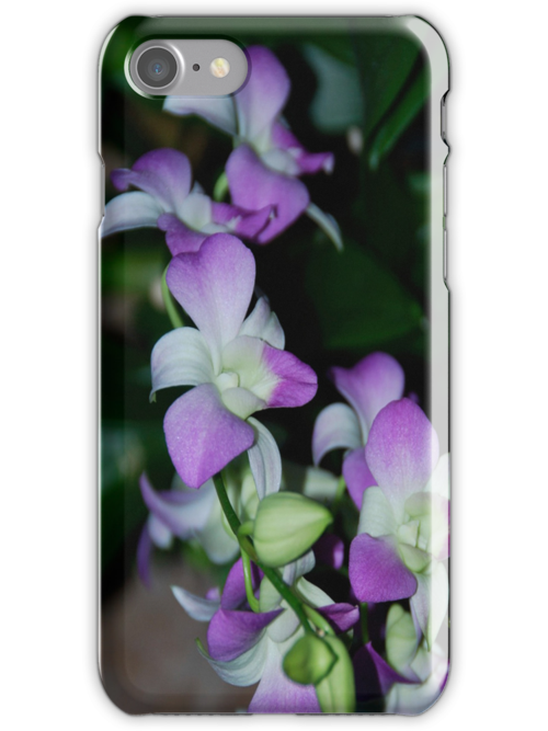 Orchid iphone Case by Cheryl  Lunde