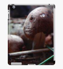 Mushroom Kingdom iPad Case/Skin