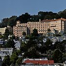 Buena Vista Heights, Corona Heights by Patrick T. Power