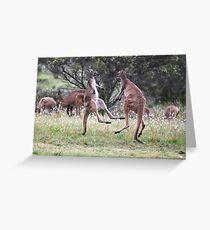 Kangaroos tail standing Greeting Card