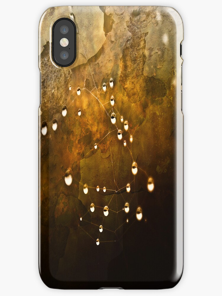 Pearls on a Web iphone  by Theodore Black