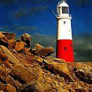 iphone case Portland Bill Lighthouse, Dorset, UK. by David Carton