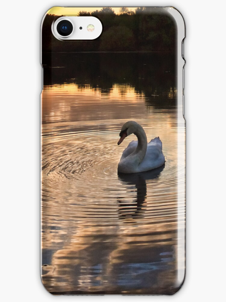Swan lake by timmburgess