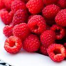 Raspberry Red by Anne Gilbert