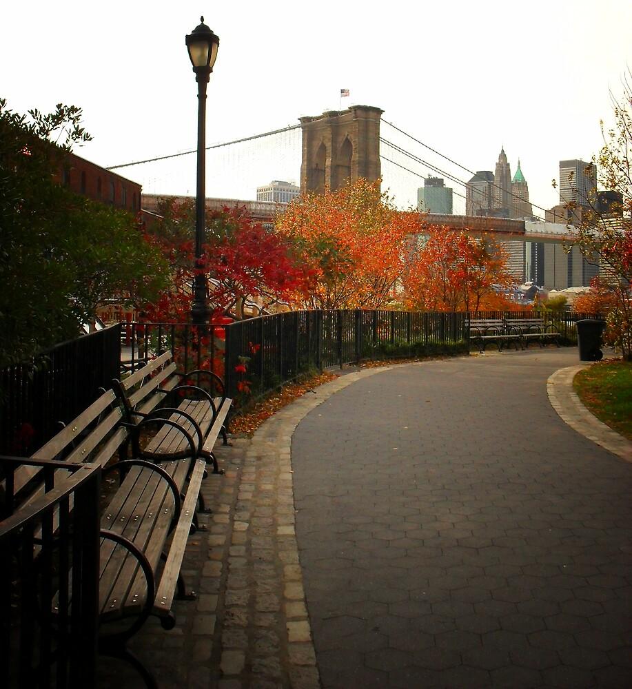 Autumn Overlooking the Brooklyn Bridge - New York City by Vivienne Gucwa